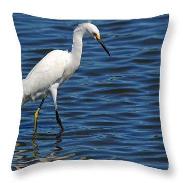 Throw Pillow featuring the photograph Snowy Egret Foraging by Olivia Hardwicke
