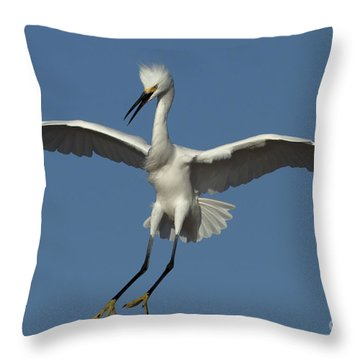 Throw Pillow featuring the photograph Snowy Egret Photo by Meg Rousher