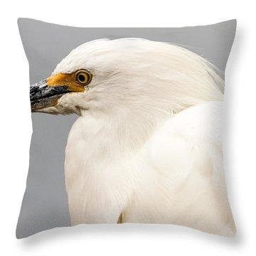 Snowy Egret Profile Throw Pillow