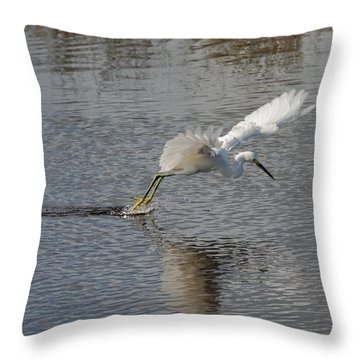 Throw Pillow featuring the photograph Snowy Egret Wind Sailing by John M Bailey