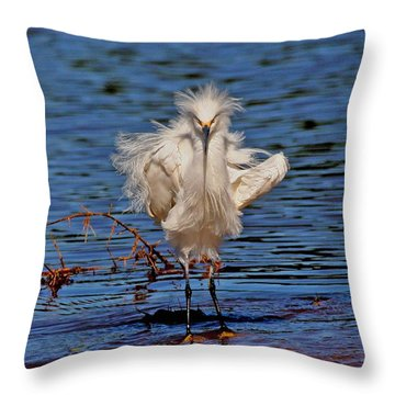Snowy Egret With Yellow Feet Throw Pillow