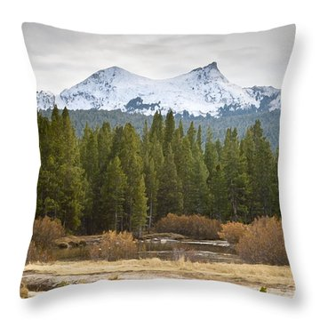 Snowy Fall In Yosemite Throw Pillow by David Millenheft