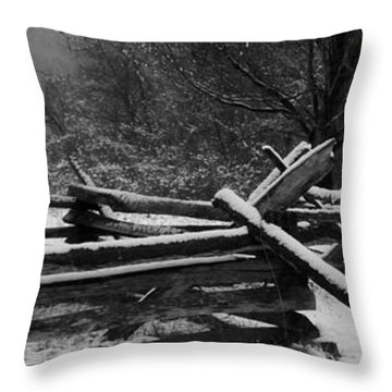 Snowy Fence Throw Pillow by Michael Porchik