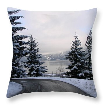 Throw Pillow featuring the photograph Snowy Gorge by Athena Mckinzie