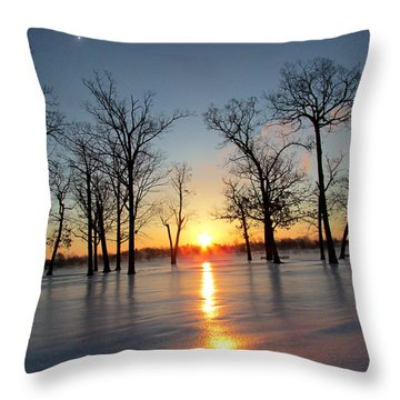 Throw Pillow featuring the photograph Snowy Ice Reflection by Michael Rucker