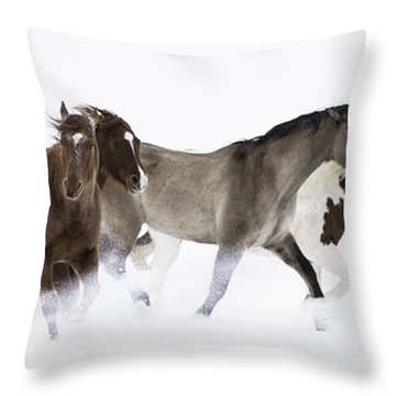 Snowy March II Throw Pillow