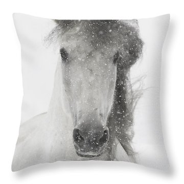 Andalusian Throw Pillows