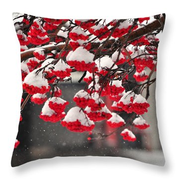 Throw Pillow featuring the photograph Snowy Mountain Ash Berries by Fran Riley