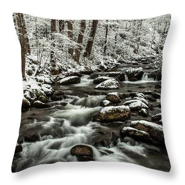 Throw Pillow featuring the photograph Snowy Mountain Stream by Debbie Green