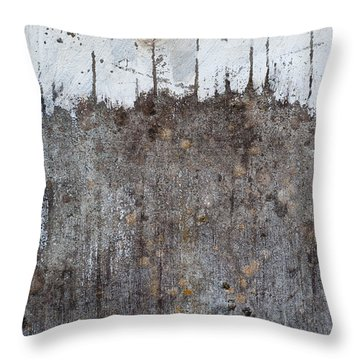 Throw Pillow featuring the photograph Snowy Mountain Top 2 by Jani Freimann