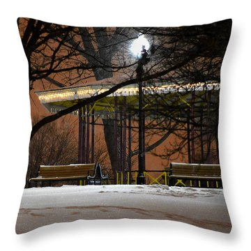 Throw Pillow featuring the photograph Snowy Night In Leone Riverside Park by Bill Swartwout