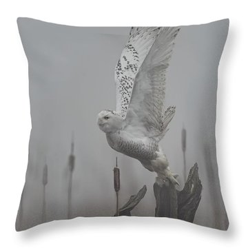 Snowy Owl Blastoff Throw Pillow