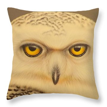 Snowy Owl Throw Pillow by Darren Robinson