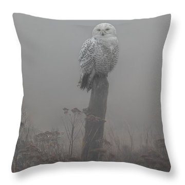Snowy Owl  In The Mist Throw Pillow