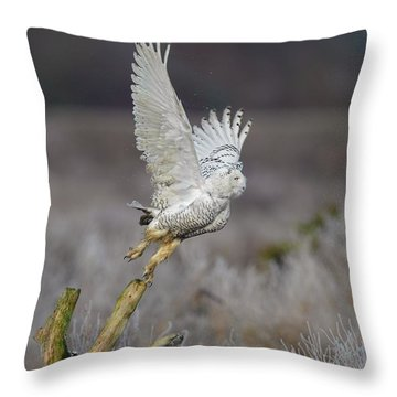 Throw Pillow featuring the photograph Snowy Owl Liftoff by Daniel Behm
