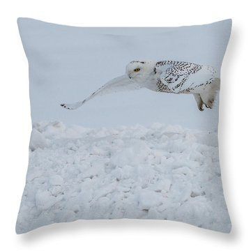 Snowy Owl #1/3 Throw Pillow by Patti Deters