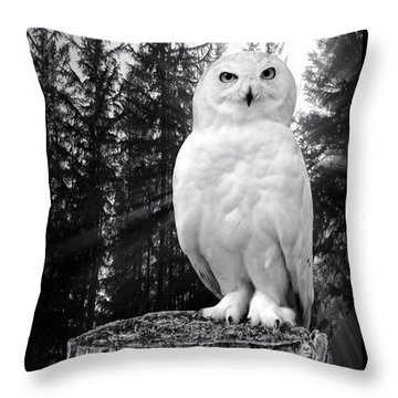 Throw Pillow featuring the photograph Snowy  by Adam Olsen