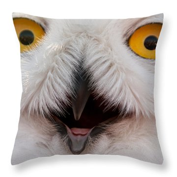 Snowy Owl Up Close And Personal Throw Pillow by Laura Duhaime