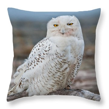 Snowy Owl Watching From A Driftwood Perch Throw Pillow