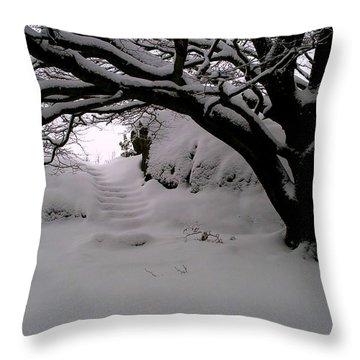 Snowy Path Throw Pillow by Amanda Moore