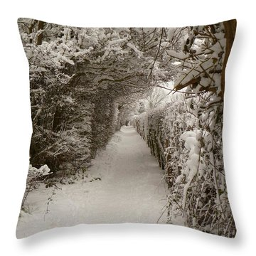 Throw Pillow featuring the photograph Snowy Path by Vicki Spindler