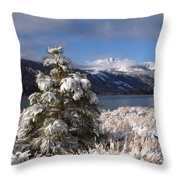 Snowy Pine  Throw Pillow