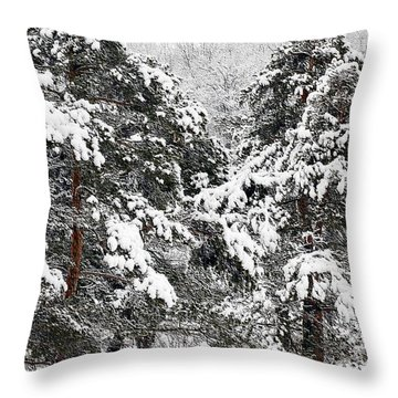 Snowy Pines Throw Pillow by Kathleen Struckle