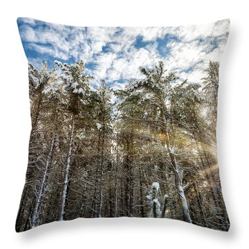 Snowy Pines With Sunflair Throw Pillow by Brian Boudreau