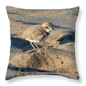 Throw Pillow featuring the photograph Snowy Plover by Bob and Jan Shriner
