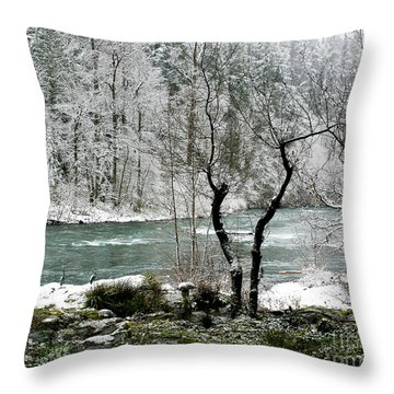 Snowy River And Bank Throw Pillow by Belinda Greb
