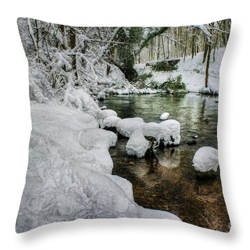 Snowy River Bank Throw Pillow