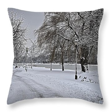 Throw Pillow featuring the photograph Snowy River by Deborah Klubertanz