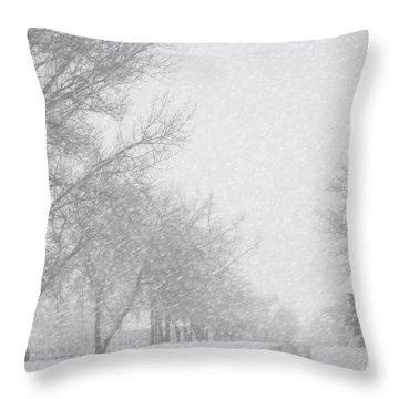 Snowy Rural Road Throw Pillow by Birgit Tyrrell