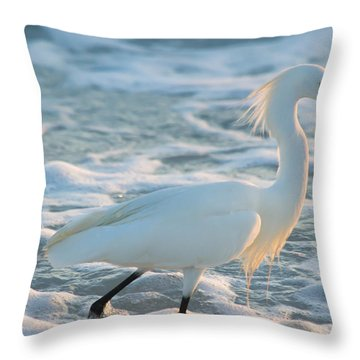 Snowy Siesta Key Sunset Throw Pillow