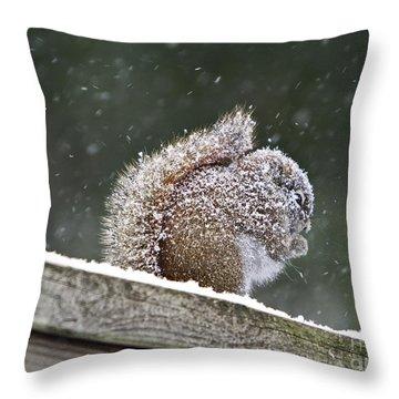 Snowy Squirrel Throw Pillow