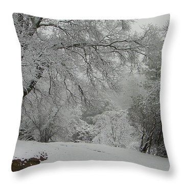 Snowy Trees Throw Pillow by Tom Mansfield
