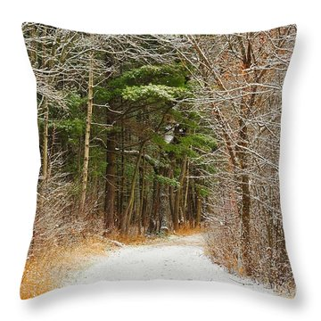 Throw Pillow featuring the photograph Snowy Tunnel Of Trees by Terri Gostola