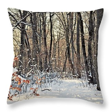 Snowy Woods Throw Pillow by Mikki Cucuzzo