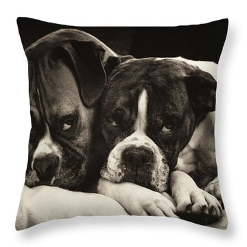Snuggle Bug Boxer Dogs Throw Pillow by Stephanie McDowell