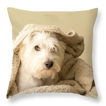 Snuggle Dog Throw Pillow by Edward Fielding