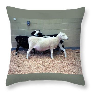 Snuggling Goats Throw Pillow