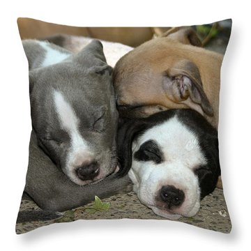 Snuggly Throw Pillow