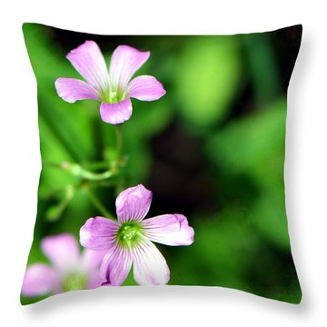 So Delicate In Purple. Texas Spring Perennial Throw Pillow by Connie Fox