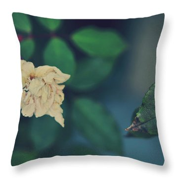 So It's Goodbye To Love Throw Pillow by Laurie Search