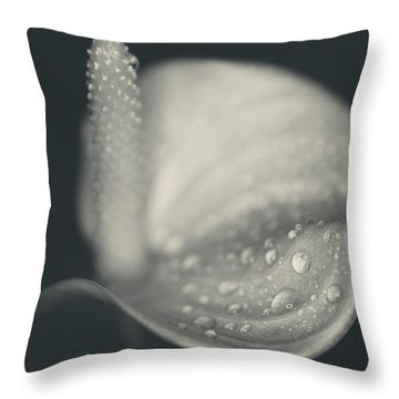 So Much I Don't Understand Throw Pillow by Laurie Search