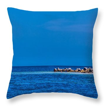 So This Is The Gulf Of Mexico Throw Pillow