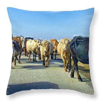 So This Is What Farm To Market Road Means - Panoramic Throw Pillow by Gary Holmes