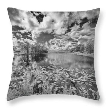 So You See It Throw Pillow