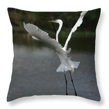 So You Think You Can Dance Throw Pillow