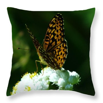 Soaking In The Sun Throw Pillow by Jeff Swan